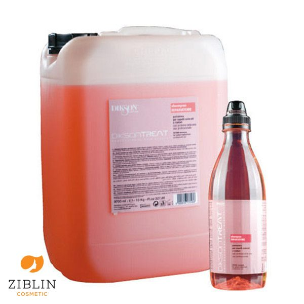 ziblin-dikson-treat-shampoo-riparatore